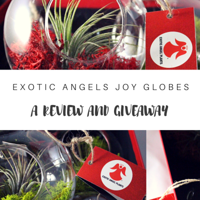 Exotic Angels Joy Globes Review and Giveaway